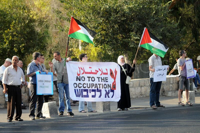 Palestinians and foreign activists hold the Palestinian flag and anti-occupation posters in Sheikh Jarrah (Photo credit: Demotix.com).
