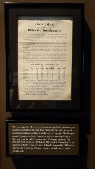 A flyer detailing the supposed illiteracy rates among Southern and Eastern European immigrants. (Photo: Claire Sadar)